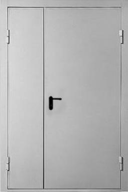 Двухпольная дверь ДП-2-60 с пас.створкой